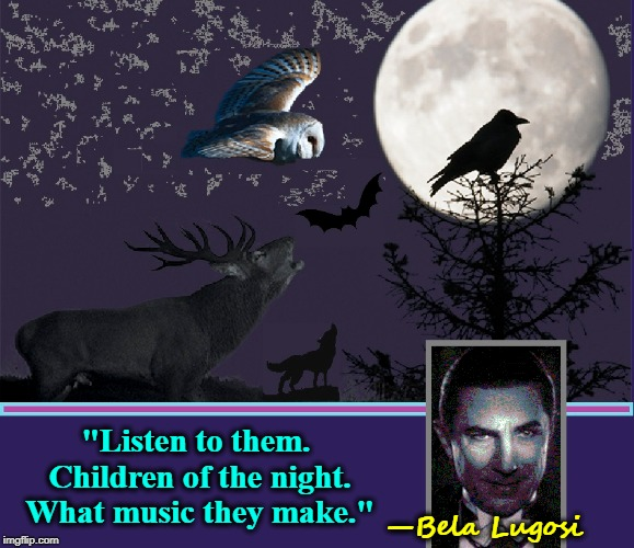 "The 1931 Words of Dracula Still Echo in Our Collective Consciousness | ""Listen to them. Children of the night. What music they make."" —Bela Lugosi 