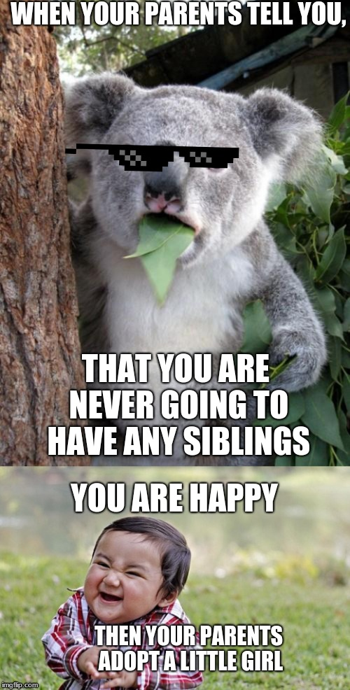 WHEN YOUR PARENTS TELL YOU, THAT YOU ARE NEVER GOING TO HAVE ANY SIBLINGS YOU ARE HAPPY THEN YOUR PARENTS ADOPT A LITTLE GIRL | image tagged in memes,surprised koala | made w/ Imgflip meme maker