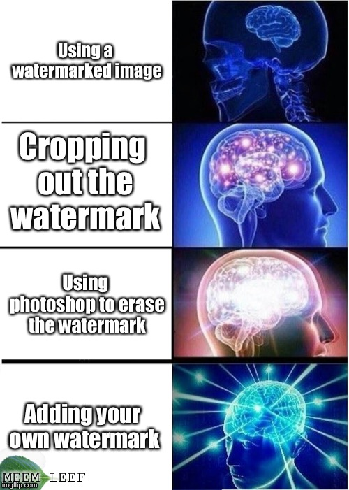 Expanding Brain Meme | Using a watermarked image Cropping out the watermark Using photoshop to erase the watermark Adding your own watermark MEEM LEEF | image tagged in memes,expanding brain | made w/ Imgflip meme maker