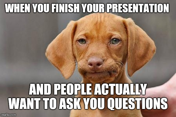 Dissapointed puppy |  WHEN YOU FINISH YOUR PRESENTATION; AND PEOPLE ACTUALLY WANT TO ASK YOU QUESTIONS | image tagged in dissapointed puppy | made w/ Imgflip meme maker