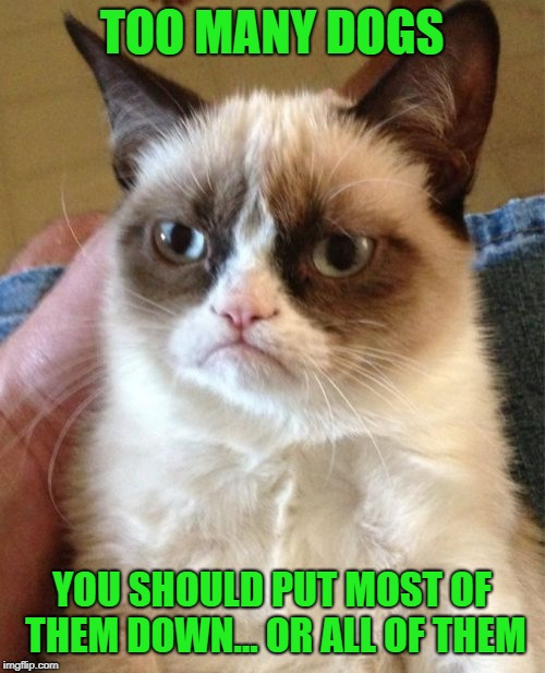 Grumpy Cat Meme | TOO MANY DOGS YOU SHOULD PUT MOST OF THEM DOWN... OR ALL OF THEM | image tagged in memes,grumpy cat | made w/ Imgflip meme maker