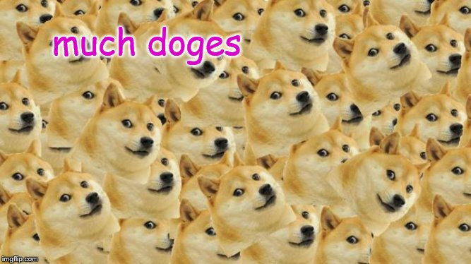 Multi Doge Meme | much doges | image tagged in memes,multi doge | made w/ Imgflip meme maker