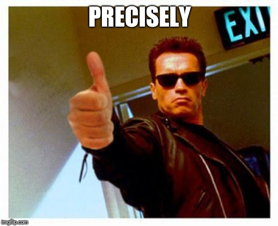 terminator thumbs up | PRECISELY | image tagged in terminator thumbs up | made w/ Imgflip meme maker