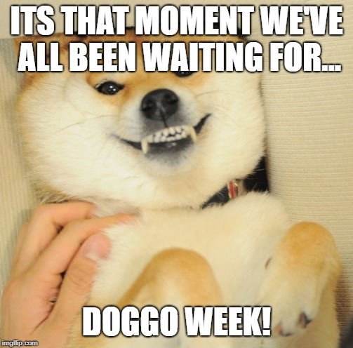 doggo week | ITS THAT MOMENT WE'VE ALL BEEN WAITING FOR... DOGGO WEEK! | image tagged in doggo week,dog,shiba inu,doge,yee | made w/ Imgflip meme maker