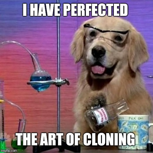 I Have No Idea What I Am Doing Dog Meme | I HAVE PERFECTED THE ART OF CLONING | image tagged in memes,i have no idea what i am doing dog | made w/ Imgflip meme maker