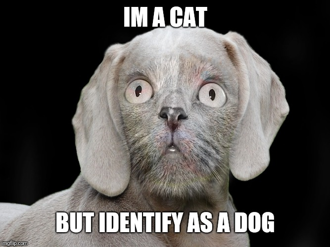 """Transgender"" Doggo Week March 10-16 a Blaze_the_Blaziken and 1forpeace Event 