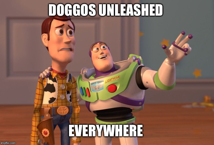 X, X Everywhere Meme | DOGGOS UNLEASHED EVERYWHERE | image tagged in memes,x x everywhere | made w/ Imgflip meme maker