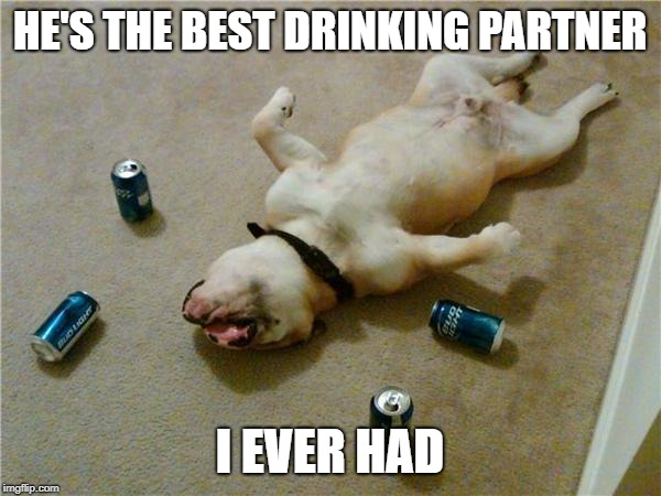 drunk dog | HE'S THE BEST DRINKING PARTNER I EVER HAD | image tagged in drunk dog | made w/ Imgflip meme maker