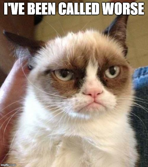 Grumpy Cat Reverse Meme | I'VE BEEN CALLED WORSE | image tagged in memes,grumpy cat reverse,grumpy cat | made w/ Imgflip meme maker
