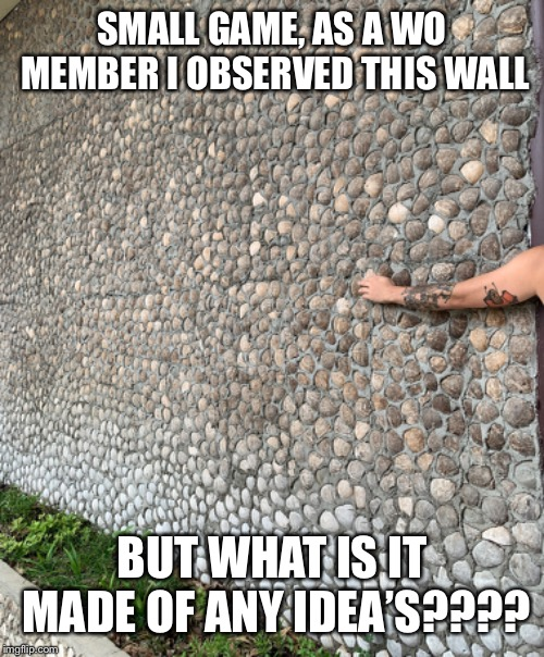 SMALL GAME, AS A WO MEMBER I OBSERVED THIS WALL BUT WHAT IS IT MADE OF ANY IDEA'S???? | made w/ Imgflip meme maker