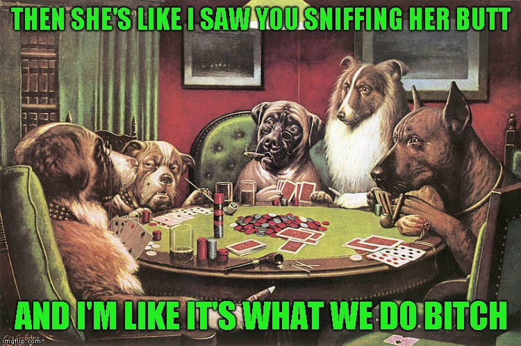 Doggo Week submission - I don't if I should apologize or roll in something stinky | THEN SHE'S LIKE I SAW YOU SNIFFING HER BUTT AND I'M LIKE IT'S WHAT WE DO B**CH | image tagged in doggo week,dogs playing cards,just a joke | made w/ Imgflip meme maker