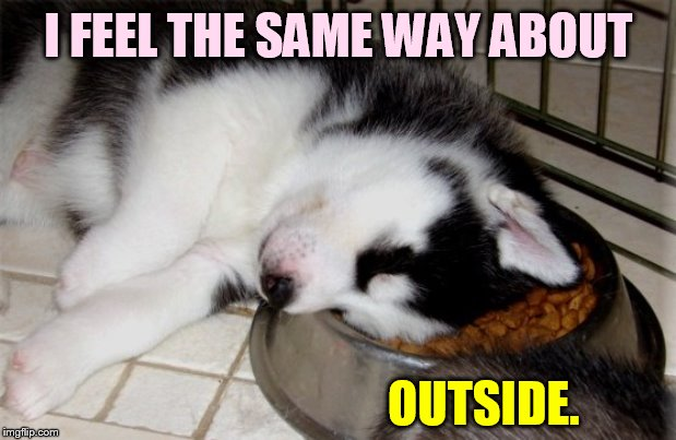 I FEEL THE SAME WAY ABOUT OUTSIDE. | made w/ Imgflip meme maker