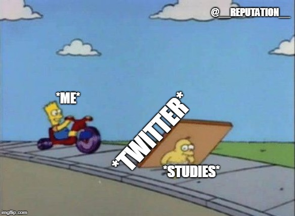 Twitter life | *ME* *STUDIES* *TWITTER* @__REPUTATION__ | image tagged in twitter,study,distraction,funny memes,school | made w/ Imgflip meme maker