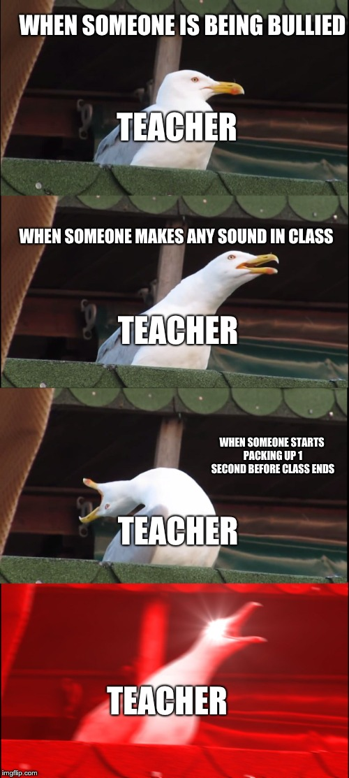 Inhaling Seagull | WHEN SOMEONE IS BEING BULLIED WHEN SOMEONE MAKES ANY SOUND IN CLASS WHEN SOMEONE STARTS PACKING UP 1 SECOND BEFORE CLASS ENDS TEACHER TEACHE | image tagged in memes,inhaling seagull | made w/ Imgflip meme maker