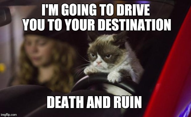Grumpy Cat Driving | I'M GOING TO DRIVE YOU TO YOUR DESTINATION DEATH AND RUIN | image tagged in grumpy cat driving | made w/ Imgflip meme maker
