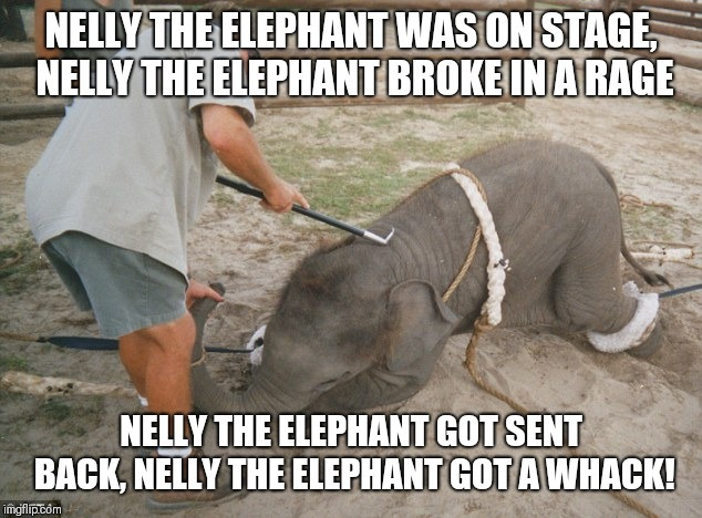 When Nelly did not want to perform | NELLY THE ELEPHANT WAS ON STAGE, NELLY THE ELEPHANT BROKE IN A RAGE NELLY THE ELEPHANT GOT SENT BACK, NELLY THE ELEPHANT GOT A WHACK! | image tagged in elephant being beaten,memes,baby elephant,elephant | made w/ Imgflip meme maker