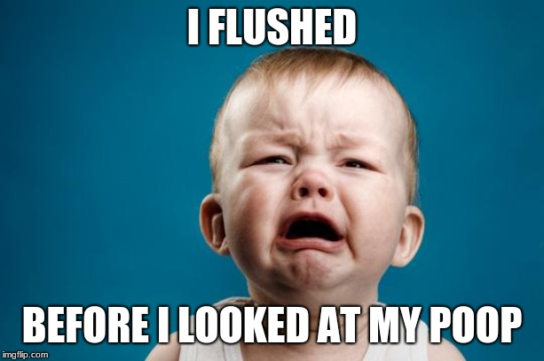 BABY CRYING | I FLUSHED BEFORE I LOOKED AT MY POOP | image tagged in baby crying | made w/ Imgflip meme maker