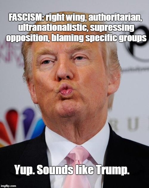 If the shoe fits, Trump must wear it. |  FASCISM: right wing, authoritarian, ultranationalistic, supressing opposition, blaming specific groups; Yup. Sounds like Trump. | image tagged in trump kiss,fascism,trump,right-wing,alt right,not democracy | made w/ Imgflip meme maker