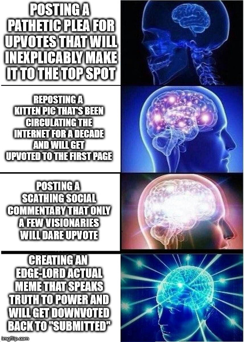 Expanding Brain | POSTING A PATHETIC PLEA FOR UPVOTES THAT WILL INEXPLICABLY MAKE IT TO THE TOP SPOT REPOSTING A KITTEN PIC THAT'S BEEN CIRCULATING THE INTERN | image tagged in memes,expanding brain | made w/ Imgflip meme maker