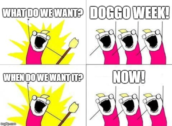 What Do We Want Meme | WHAT DO WE WANT? DOGGO WEEK! WHEN DO WE WANT IT? NOW! | image tagged in memes,what do we want | made w/ Imgflip meme maker