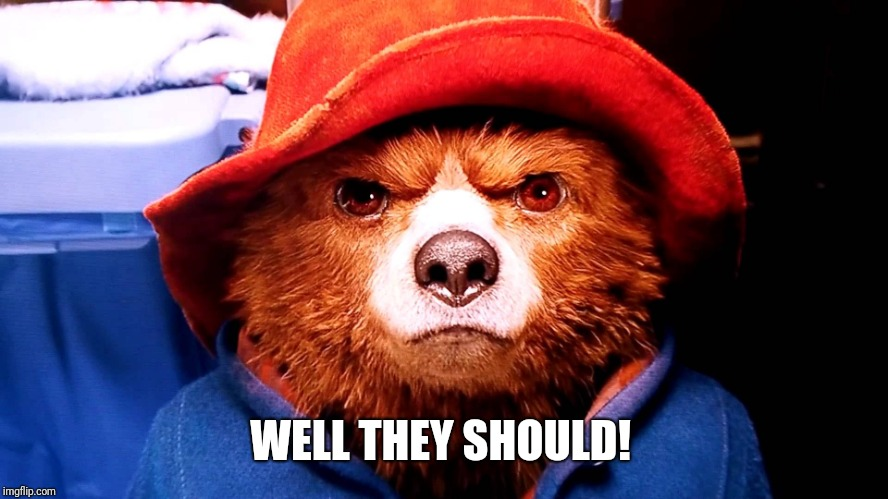 Paddington hard stare | WELL THEY SHOULD! | image tagged in paddington hard stare | made w/ Imgflip meme maker
