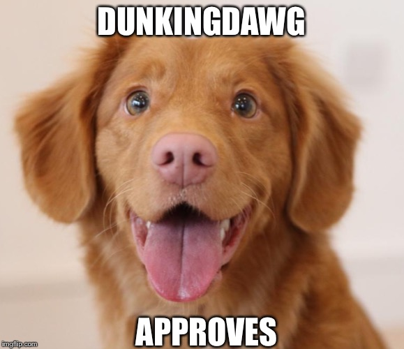 Event In Honor of Raydog's Mom! Dog memes event Feb-8 to Feb-20 | DUNKINGDAWG APPROVES | image tagged in event in honor of raydogs mom dog memes event feb-8 to feb-20 | made w/ Imgflip meme maker