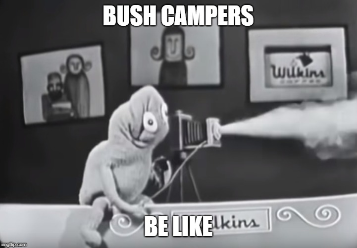 BUSH CAMPERS; BE LIKE | image tagged in memes,kermit the frog | made w/ Imgflip meme maker