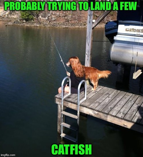 Are you for reel? (Doggo Week March 10-16 a Blaze_the_Blaziken and 1forpeace Event) | PROBABLY TRYING TO LAND A FEW CATFISH | image tagged in doggo week,blaze the blaziken,1forpeace,doggos,gone fishing | made w/ Imgflip meme maker