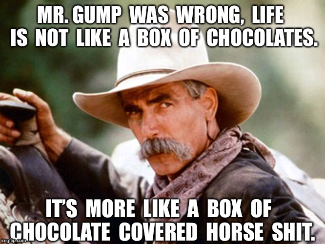 Sam Elliott Cowboy | MR. GUMP  WAS  WRONG,  LIFE  IS  NOT  LIKE  A  BOX  OF  CHOCOLATES. IT'S  MORE  LIKE  A  BOX  OF  CHOCOLATE  COVERED  HORSE  SHIT. | image tagged in sam elliott cowboy | made w/ Imgflip meme maker