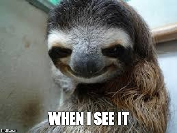 Creepy sloth | WHEN I SEE IT | image tagged in creepy sloth | made w/ Imgflip meme maker