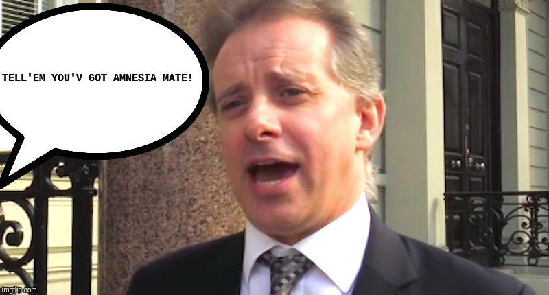#FISA | TELL'EM YOU'V GOT AMNESIA MATE! | image tagged in the great awakening | made w/ Imgflip meme maker