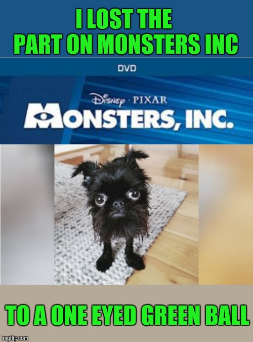 Poor little dog... Doggo Week March 10-16 (A Blaze_the_Blaziken and 1forpiece event) | I LOST THE PART ON MONSTERS INC TO A ONE EYED GREEN BALL | image tagged in memes,funny,monsters inc,doggo week,dogs,funny dog | made w/ Imgflip meme maker