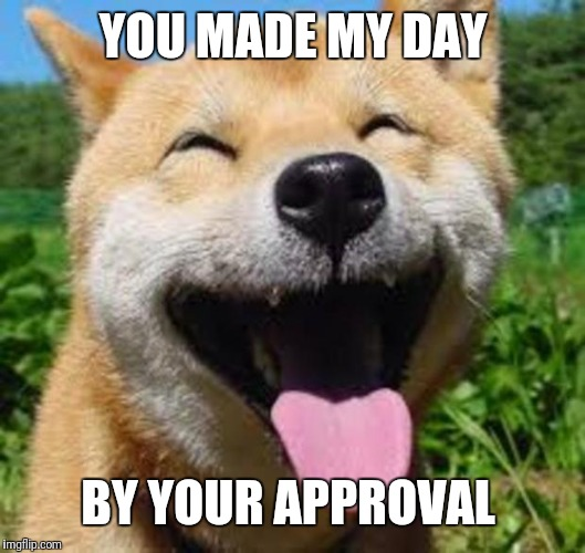Happy Doge | YOU MADE MY DAY BY YOUR APPROVAL | image tagged in happy doge | made w/ Imgflip meme maker