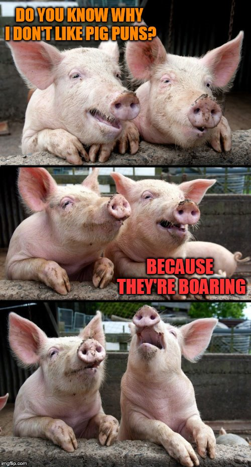 Pig Jokes | DO YOU KNOW WHY I DON'T LIKE PIG PUNS? BECAUSE THEY'RE BOARING | image tagged in pig puns,pigs,pig,jokes,boar,laugh | made w/ Imgflip meme maker