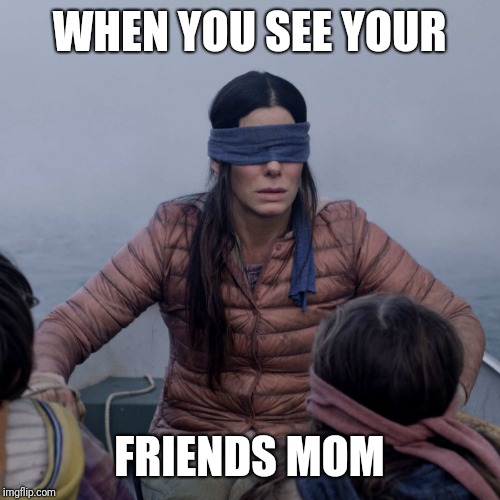Bird Box Meme | WHEN YOU SEE YOUR FRIENDS MOM | image tagged in memes,bird box | made w/ Imgflip meme maker