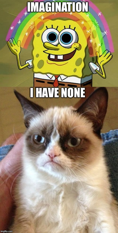 IMAGINATION I HAVE NONE | image tagged in memes,imagination spongebob,grumpy cat | made w/ Imgflip meme maker