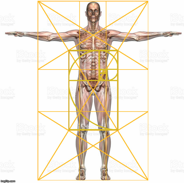 "A human body with the Golden Ratio.  I think the first human (or life) was female.  So much for ""Adam and Eve"". 