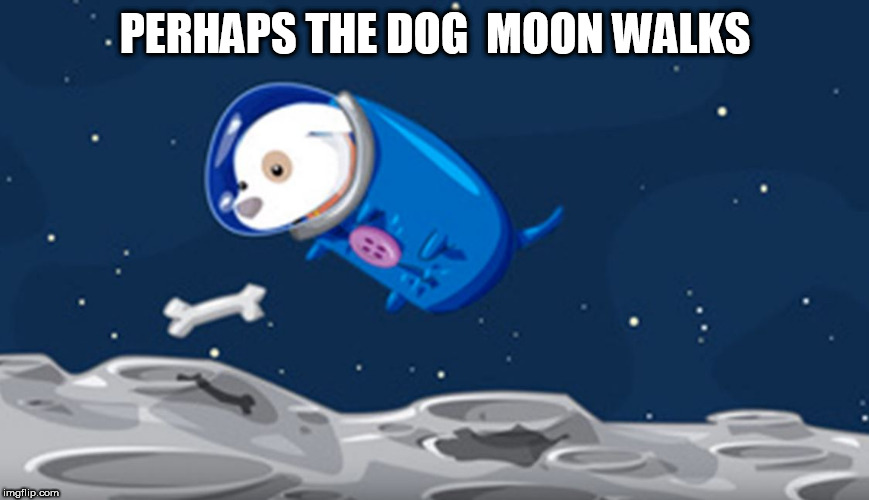 PERHAPS THE DOG  MOON WALKS | made w/ Imgflip meme maker
