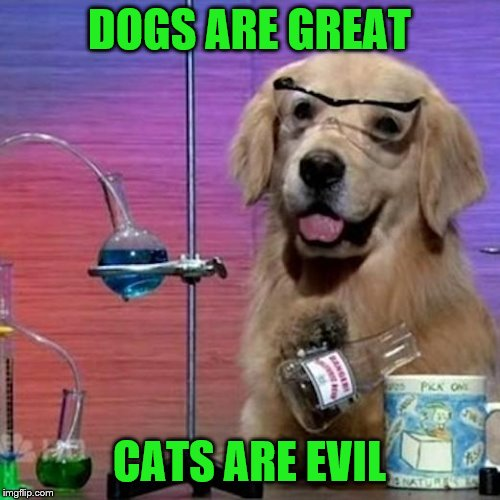 I Have No Idea What I Am Doing Dog Meme | DOGS ARE GREAT CATS ARE EVIL | image tagged in memes,i have no idea what i am doing dog | made w/ Imgflip meme maker