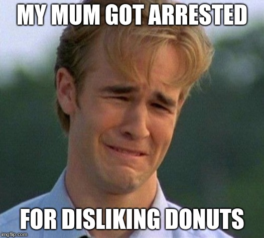 1990s First World Problems Meme | MY MUM GOT ARRESTED FOR DISLIKING DONUTS | image tagged in memes,1990s first world problems | made w/ Imgflip meme maker