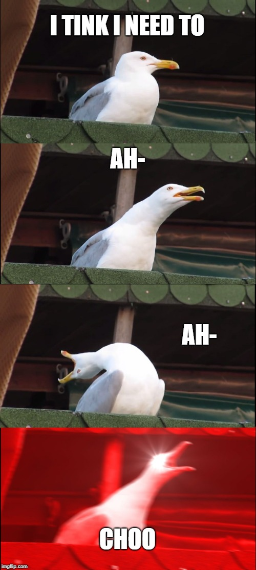 Inhaling Seagull Meme | I TINK I NEED TO AH- AH- CHOO | image tagged in memes,inhaling seagull | made w/ Imgflip meme maker