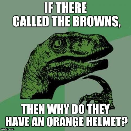 The Browns, or Oranges? | IF THERE CALLED THE BROWNS, THEN WHY DO THEY HAVE AN ORANGE HELMET? | image tagged in memes,philosoraptor,nfl,cleveland browns | made w/ Imgflip meme maker
