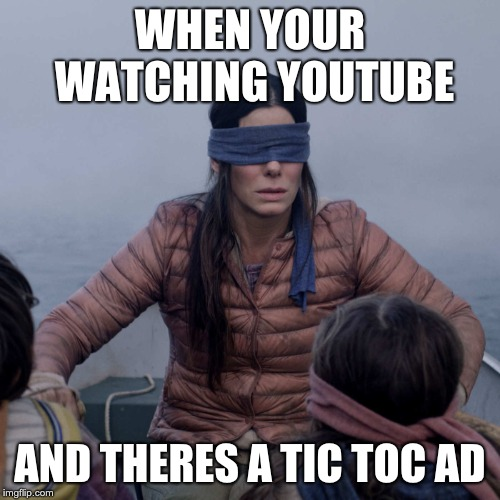 Bird Box | WHEN YOUR WATCHING YOUTUBE AND THERES A TIC TOC AD | image tagged in memes,bird box | made w/ Imgflip meme maker