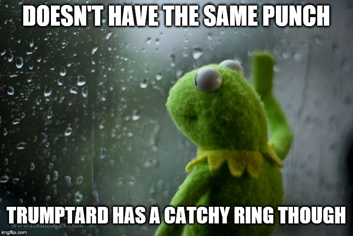 kermit window | DOESN'T HAVE THE SAME PUNCH TRUMPTARD HAS A CATCHY RING THOUGH | image tagged in kermit window | made w/ Imgflip meme maker