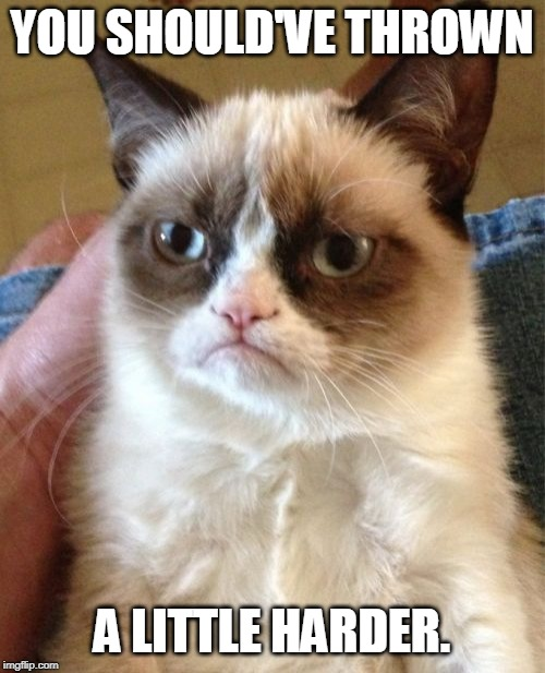 YOU SHOULD'VE THROWN A LITTLE HARDER. | image tagged in memes,grumpy cat | made w/ Imgflip meme maker