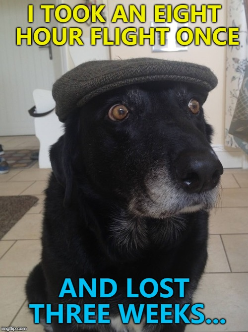 That's what happens when one year equals seven for a dog... :) | I TOOK AN EIGHT HOUR FLIGHT ONCE AND LOST THREE WEEKS... | image tagged in back in my day dog,memes,doggo week,dogs,animals | made w/ Imgflip meme maker