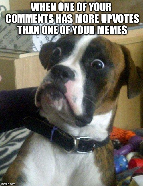 Blankie the Shocked Dog | WHEN ONE OF YOUR COMMENTS HAS MORE UPVOTES THAN ONE OF YOUR MEMES | image tagged in blankie the shocked dog | made w/ Imgflip meme maker