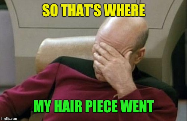 Captain Picard Facepalm Meme | SO THAT'S WHERE MY HAIR PIECE WENT | image tagged in memes,captain picard facepalm | made w/ Imgflip meme maker