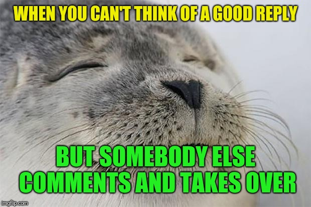 Admit it...this has happened to you too |  WHEN YOU CAN'T THINK OF A GOOD REPLY; BUT SOMEBODY ELSE COMMENTS AND TAKES OVER | image tagged in memes,satisfied seal,comments,replies,other users | made w/ Imgflip meme maker