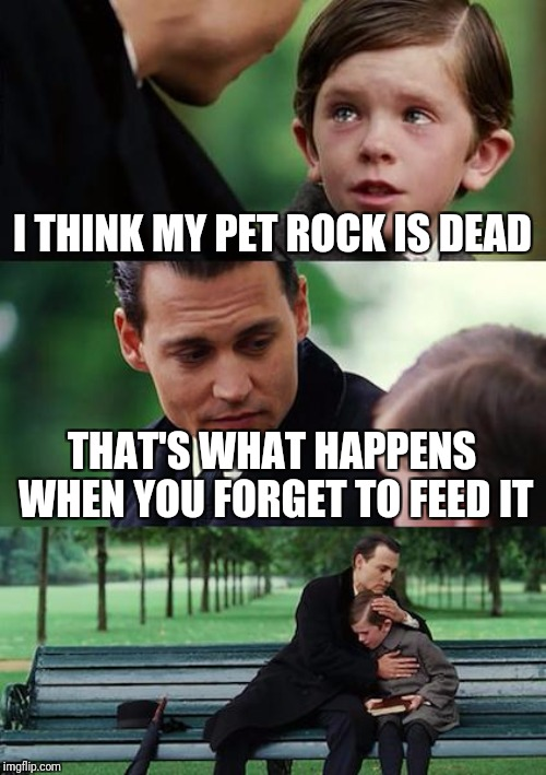 Finding Neverland Meme | I THINK MY PET ROCK IS DEAD THAT'S WHAT HAPPENS WHEN YOU FORGET TO FEED IT | image tagged in memes,finding neverland | made w/ Imgflip meme maker